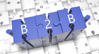Plataforma de E-commerce B2B
